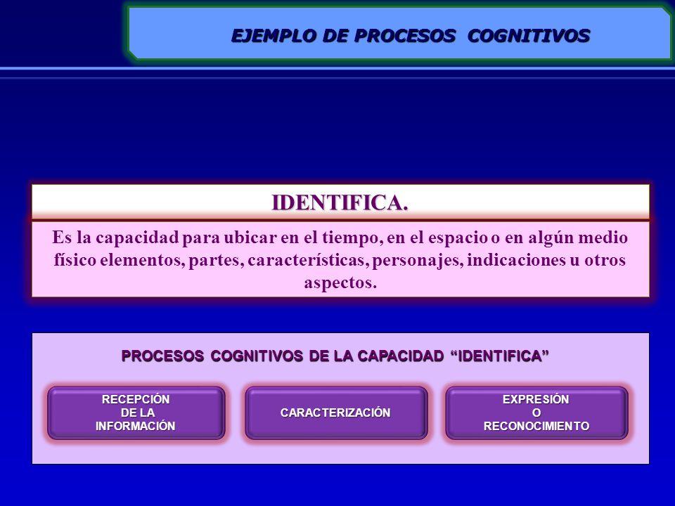 LAS CAPACIDADES SE DESARROLLAN MEDIANTE ESTRATEGIAS /ACTIVIDADES DE APRENDIZAJE QUE PERMITAN ACTIVAR EN LOS ESTUDIANTES LOS PROCESOS COGNITIVOS O MOTORES QUE INVOLUCRA LA CAPACIDAD ESPECÍFICA RECEPCIÓN DE LA INFORMACIÓN OBSERVACIÓN SELECTIVA DESCOMPOSICIÓN DEL TODO EN PARTES INTERRELACIONAR LAS PARTES PARA EXPLICAR O JUSTIFICAR ESTRATEGIA DE APRENDIZAJE Lecturaindividual Subrayado de las ideas principales Elaboración de un cuadro sinóptico Exposición PROCESOS COGNITIVOS DE LA CAPACIDAD ANALIZA ACTIVIDAD DE APRENDIZAJE PROCESOS COGNITIVOS - ESTRATEGIAS DE APRENDIZAJE