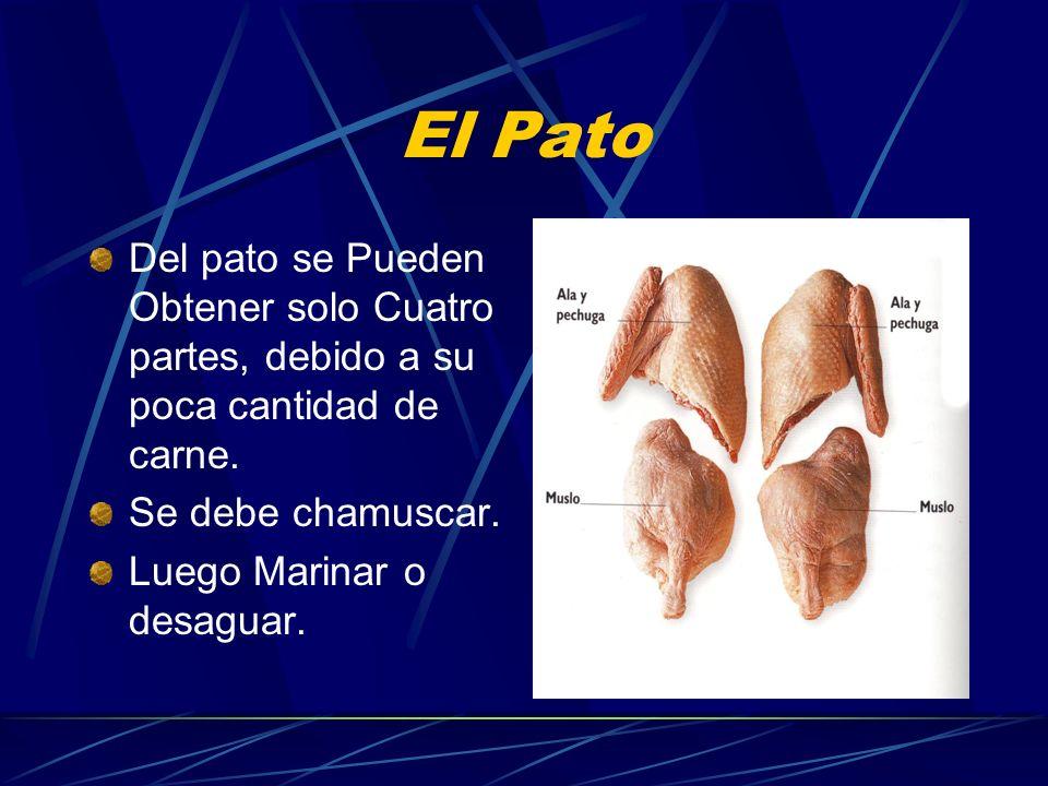 El Pato Del pato se Pueden Obtener solo Cuatro partes, debido a su poca cantidad de carne. Se debe chamuscar. Luego Marinar o desaguar.