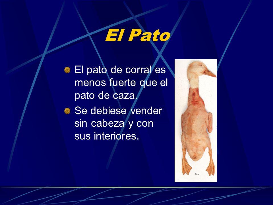 El Pato El pato de corral es menos fuerte que el pato de caza. Se debiese vender sin cabeza y con sus interiores.