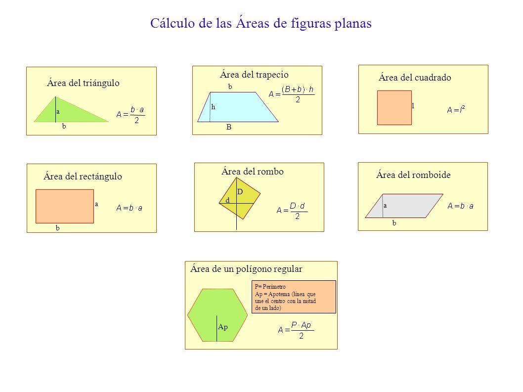 Área El área de un polígono es la porción de plano comprendida entre sus lados. Es decir, la medida de la superficie encerrada por una línea poligonal