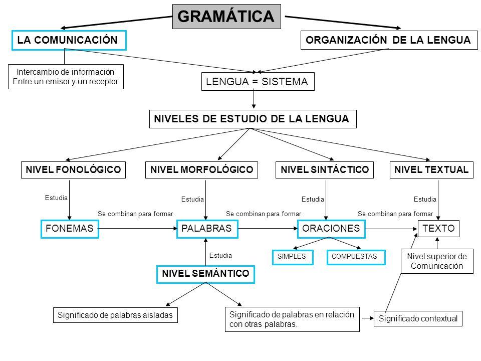 GRAMÁTICA LA COMUNICACIÓN ORGANIZACIÓN DE LA LENGUA NIVELES DE ESTUDIO DE LA LENGUA NIVEL FONOLÓGICONIVEL MORFOLÓGICONIVEL SINTÁCTICONIVEL TEXTUAL Est