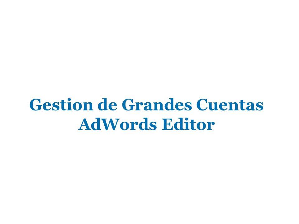 Gestion de Grandes Cuentas AdWords Editor