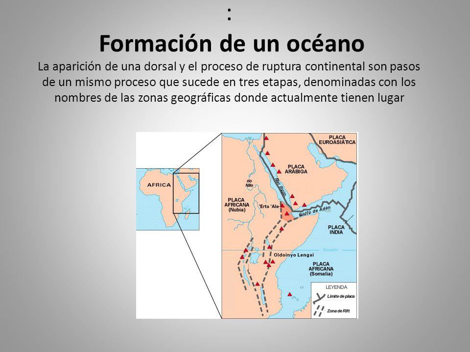 : Formación de un océano La aparición de una dorsal y el proceso de ruptura continental son pasos de un mismo proceso que sucede en tres etapas, denom