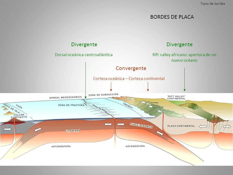 Tipos de bordes Convergente Divergente Dorsal oceánica centroatlánticaRift valley africano: apertura de un nuevo océano Corteza oceánica – Corteza con