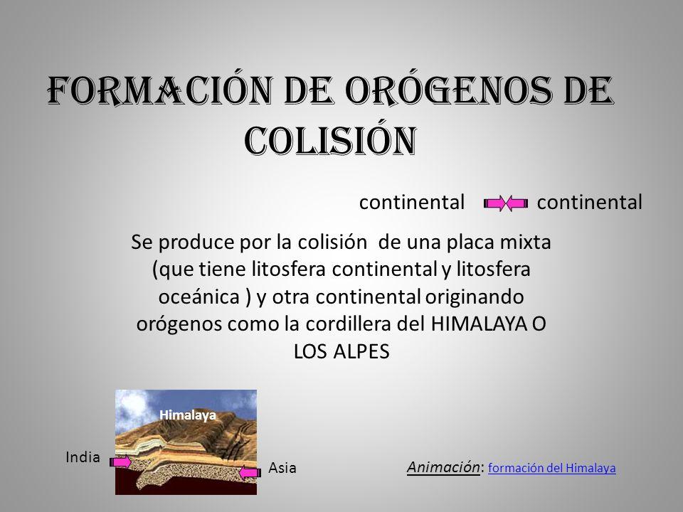 Formación de orógenos de colisión Se produce por la colisión de una placa mixta (que tiene litosfera continental y litosfera oceánica ) y otra contine