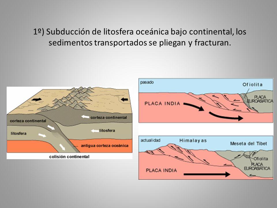 1º) Subducción de litosfera oceánica bajo continental, los sedimentos transportados se pliegan y fracturan.