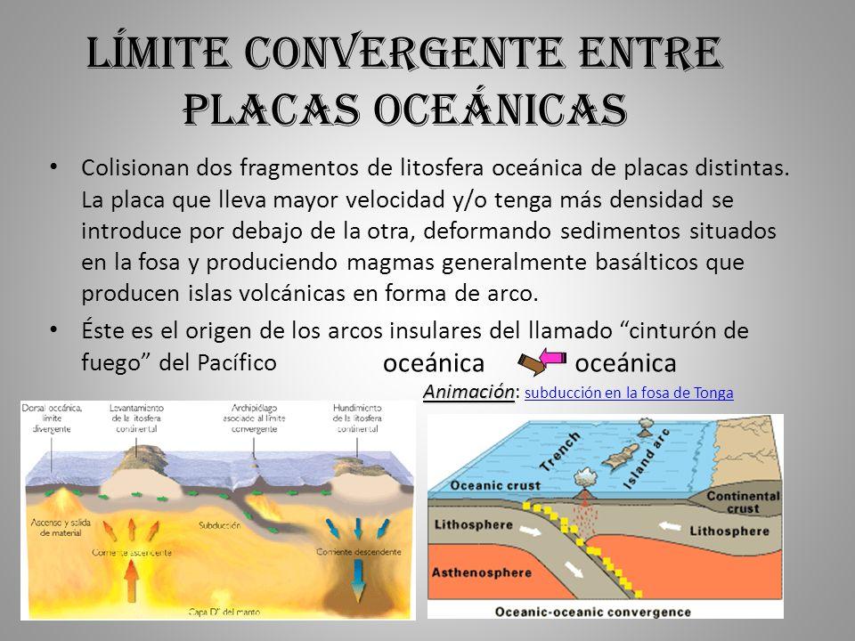 Límite convergente entre placas oceánicas Colisionan dos fragmentos de litosfera oceánica de placas distintas. La placa que lleva mayor velocidad y/o