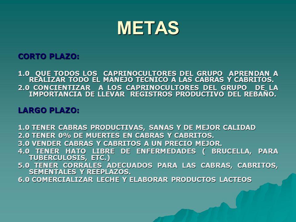 METAS CORTO PLAZO: 1.0 QUE TODOS LOS CAPRINOCULTORES DEL GRUPO APRENDAN A REALIZAR TODO EL MANEJO TECNICO A LAS CABRAS Y CABRITOS. 2.0 CONCIENTIZAR A