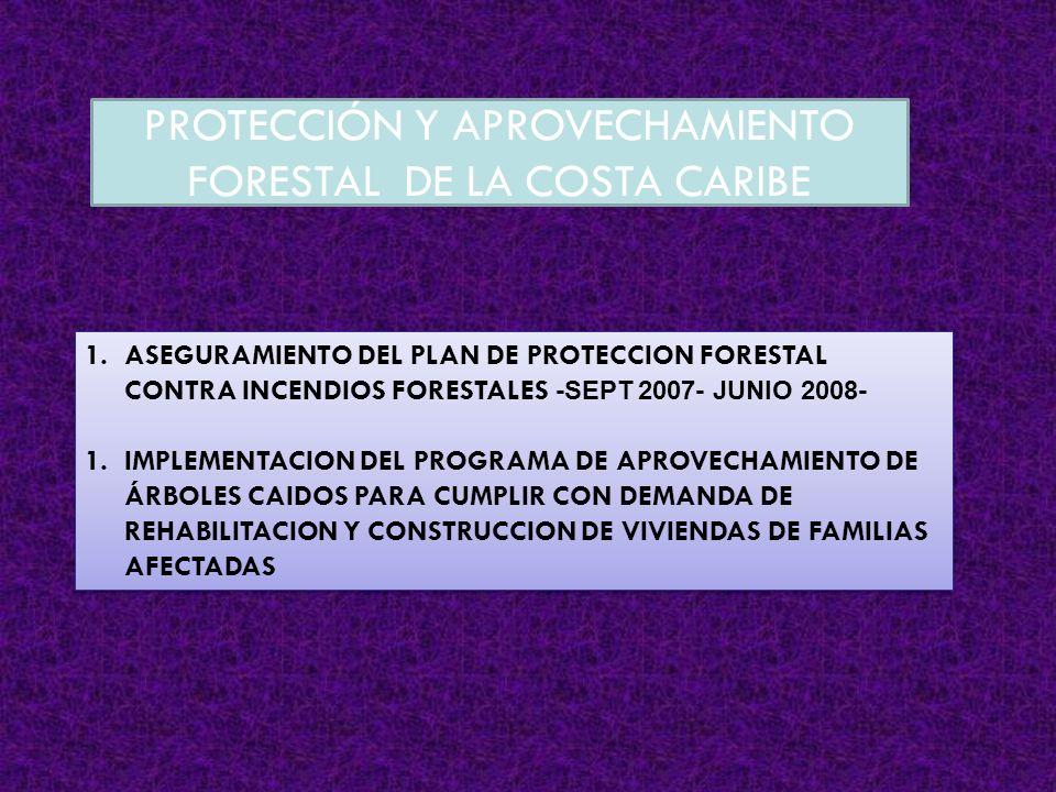 PROTECCIÓN Y APROVECHAMIENTO FORESTAL DE LA COSTA CARIBE 1.ASEGURAMIENTO DEL PLAN DE PROTECCION FORESTAL CONTRA INCENDIOS FORESTALES -SEPT 2007- JUNIO