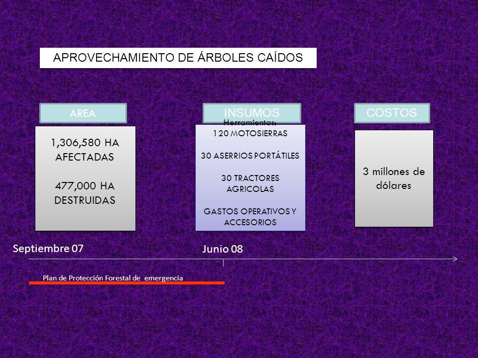 AREA INSUMOSCOSTOS 1,306,580 HA AFECTADAS 477,000 HA DESTRUIDAS 1,306,580 HA AFECTADAS 477,000 HA DESTRUIDAS Herramientas: 120 MOTOSIERRAS 30 ASERRIOS