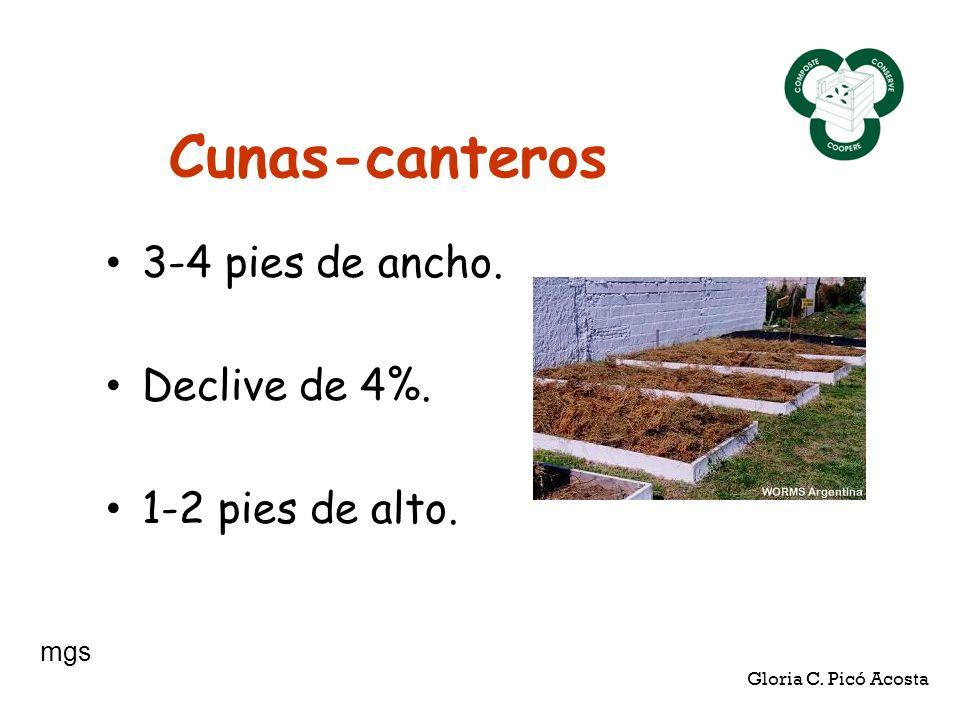 Cunas-canteros 3-4 pies de ancho. Declive de 4%. 1-2 pies de alto. Gloria C. Picó Acosta mgs