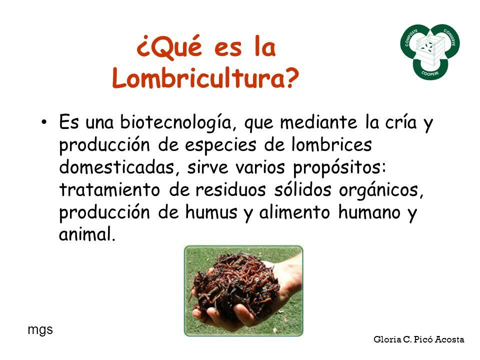 ¿Qué es la Lombricultura? Es una biotecnología, que mediante la cría y producción de especies de lombrices domesticadas, sirve varios propósitos: trat