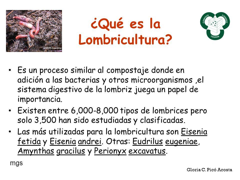 ¿Qué es la Lombricultura? Es un proceso similar al compostaje donde en adición a las bacterias y otros microorganismos,el sistema digestivo de la lomb