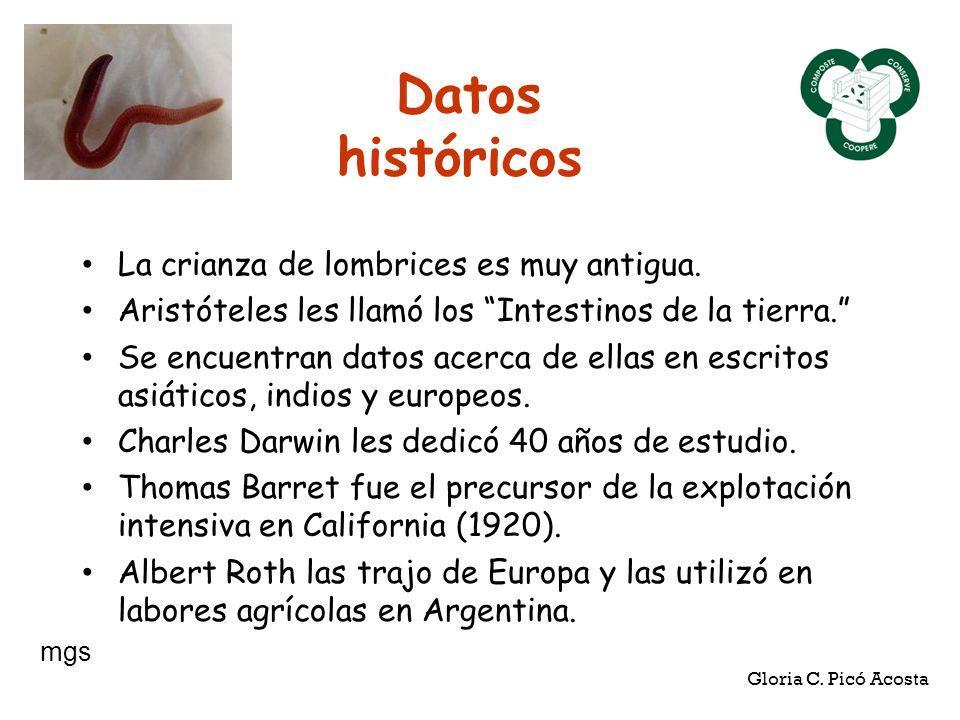 Datos históricos La crianza de lombrices es muy antigua. Aristóteles les llamó los Intestinos de la tierra. Se encuentran datos acerca de ellas en esc