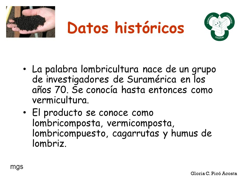 Datos históricos La palabra lombricultura nace de un grupo de investigadores de Suramérica en los años 70. Se conocía hasta entonces como vermicultura