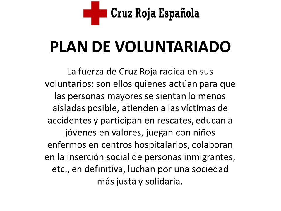 PLAN DE VOLUNTARIADO La fuerza de Cruz Roja radica en sus voluntarios: son ellos quienes actúan para que las personas mayores se sientan lo menos aisl