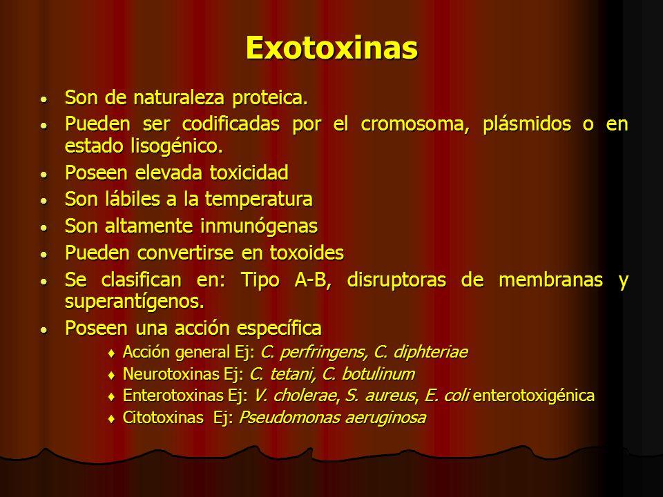 Exotoxinas Son de naturaleza proteica.Son de naturaleza proteica.