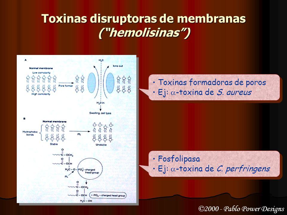 Toxinas disruptoras de membranas ToxinaEspecie productora Mecanismo de acción Rol en la enfermedad ListeriolisinaListeria monocitógenes Citotoxina for