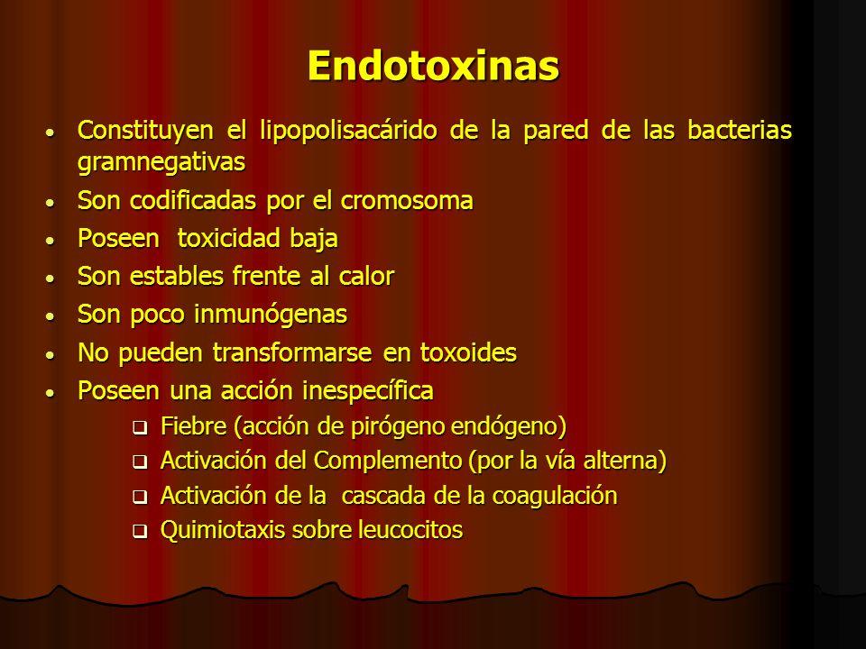 Toxinas disruptoras de membranas (hemolisinas) Toxinas formadoras de poros Ej: -toxina de S. aureus Toxinas formadoras de poros Ej: -toxina de S. aure