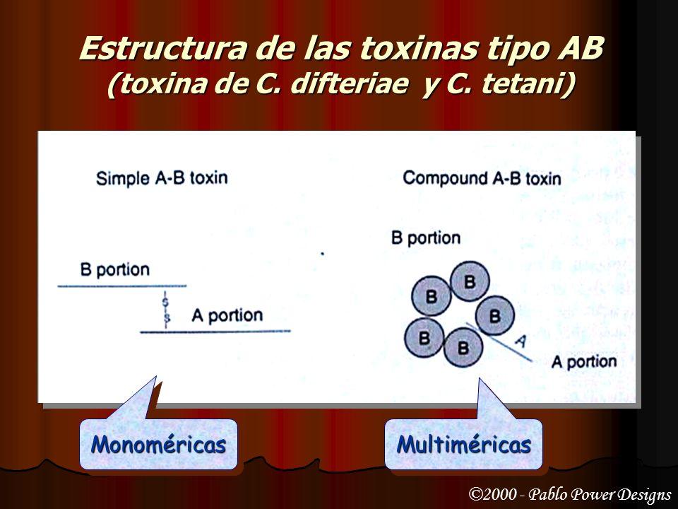 Endotoxinas Constituyen el lipopolisacárido de la pared de las bacterias gramnegativas Constituyen el lipopolisacárido de la pared de las bacterias gramnegativas Son codificadas por el cromosoma Son codificadas por el cromosoma Poseen toxicidad baja Poseen toxicidad baja Son estables frente al calor Son estables frente al calor Son poco inmunógenas Son poco inmunógenas No pueden transformarse en toxoides No pueden transformarse en toxoides Poseen una acción inespecífica Poseen una acción inespecífica Fiebre (acción de pirógeno endógeno) Fiebre (acción de pirógeno endógeno) Activación del Complemento (por la vía alterna) Activación del Complemento (por la vía alterna) Activación de la cascada de la coagulación Activación de la cascada de la coagulación Quimiotaxis sobre leucocitos Quimiotaxis sobre leucocitos