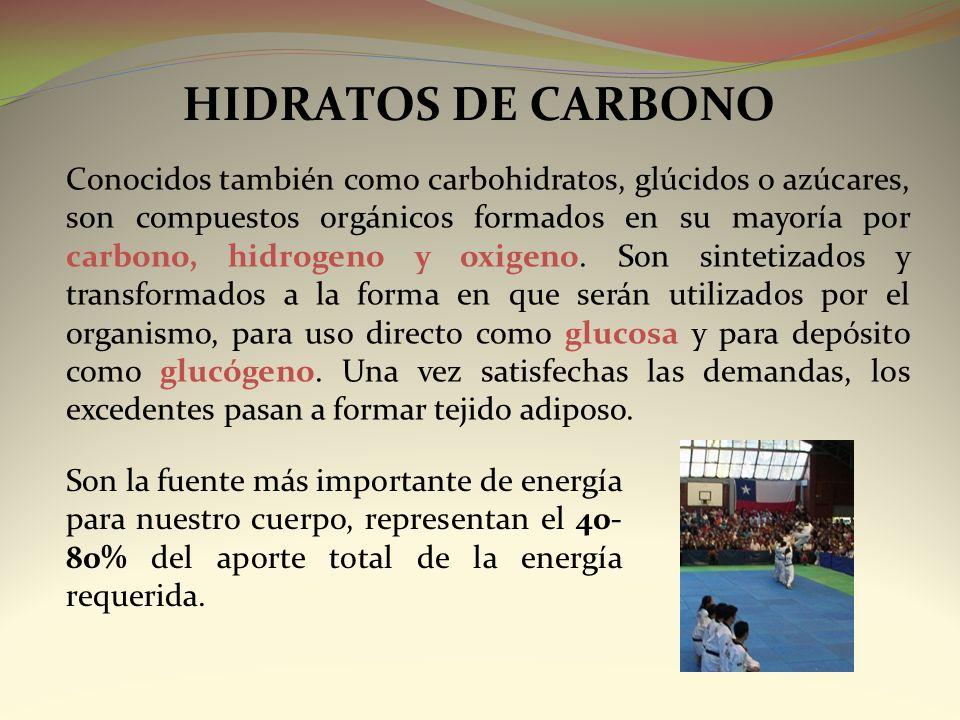 HIDRATOS DE CARBONO Conocidos también como carbohidratos, glúcidos o azúcares, son compuestos orgánicos formados en su mayoría por carbono, hidrogeno