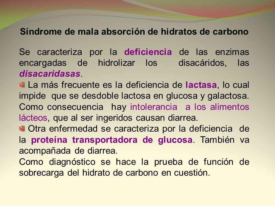 Síndrome de mala absorción de hidratos de carbono Se caracteriza por la deficiencia de las enzimas encargadas de hidrolizar los disacáridos, las disac
