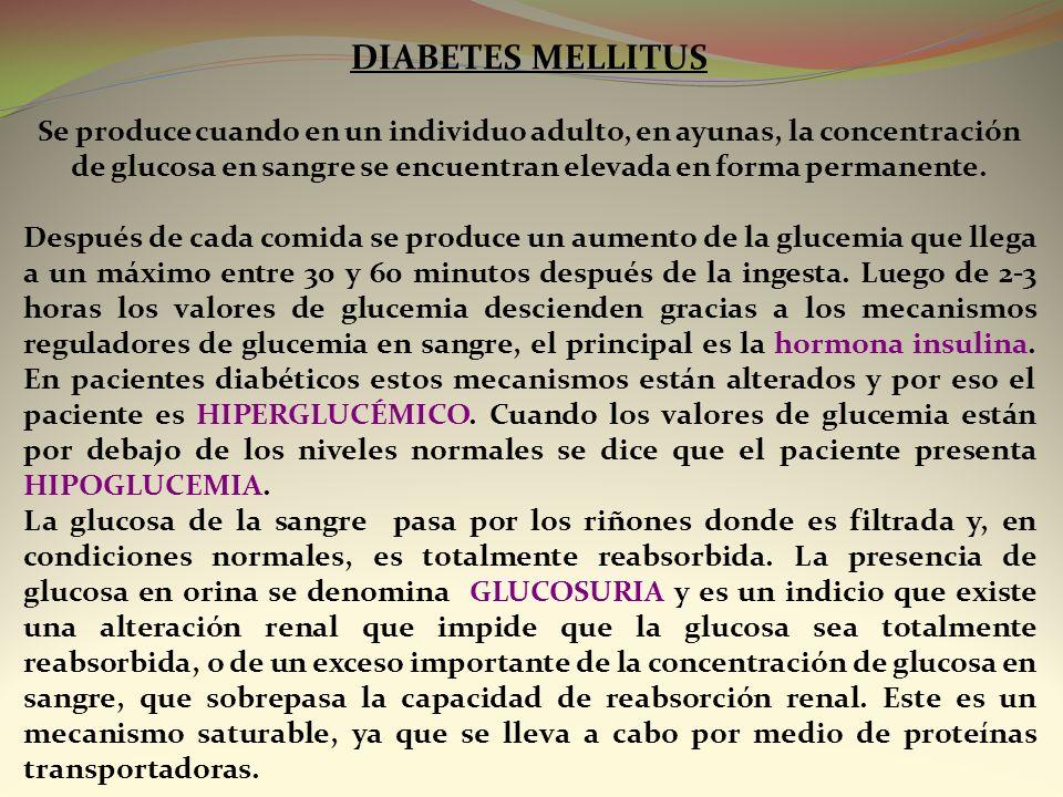 DIABETES MELLITUS Se produce cuando en un individuo adulto, en ayunas, la concentración de glucosa en sangre se encuentran elevada en forma permanente