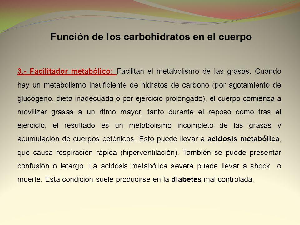 3.- Facilitador metabólico: Facilitan el metabolismo de las grasas. Cuando hay un metabolismo insuficiente de hidratos de carbono (por agotamiento de