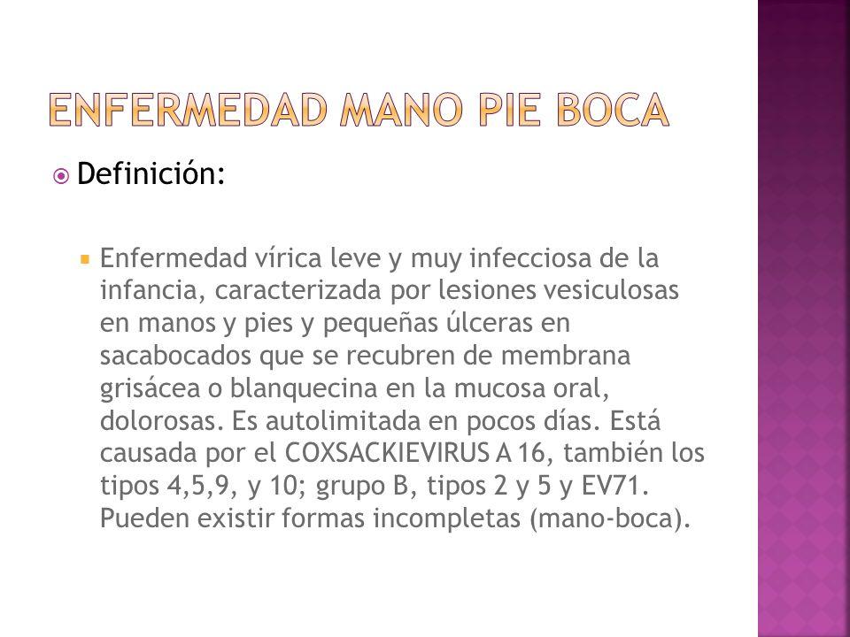 Definición: Enfermedad vírica leve y muy infecciosa de la infancia, caracterizada por lesiones vesiculosas en manos y pies y pequeñas úlceras en sacab