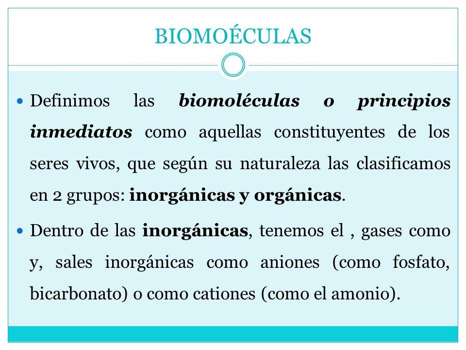 BIOMOÉCULAS Definimos las biomoléculas o principios inmediatos como aquellas constituyentes de los seres vivos, que según su naturaleza las clasificam