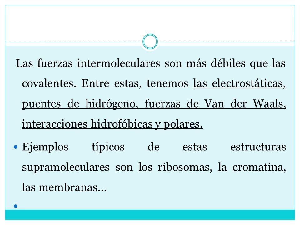 Las fuerzas intermoleculares son más débiles que las covalentes. Entre estas, tenemos las electrostáticas, puentes de hidrógeno, fuerzas de Van der Wa