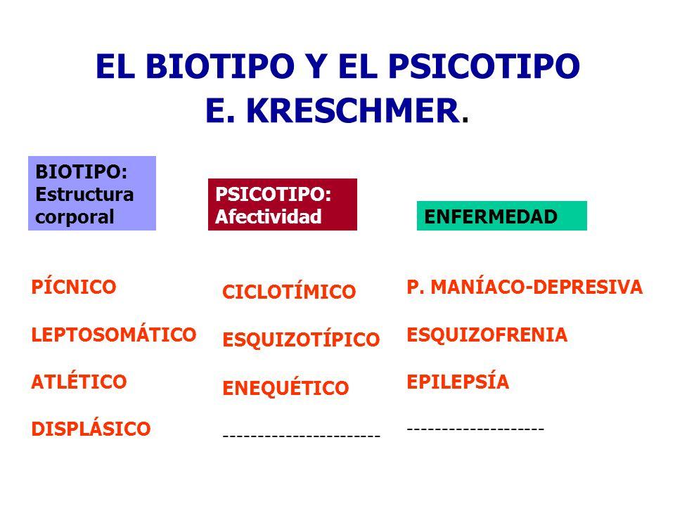 EL BIOTIPO Y EL PSICOTIPO E. KRESCHMER. BIOTIPO: Estructura corporal PSICOTIPO: Afectividad ENFERMEDAD PÍCNICO LEPTOSOMÁTICO ATLÉTICO DISPLÁSICO CICLO