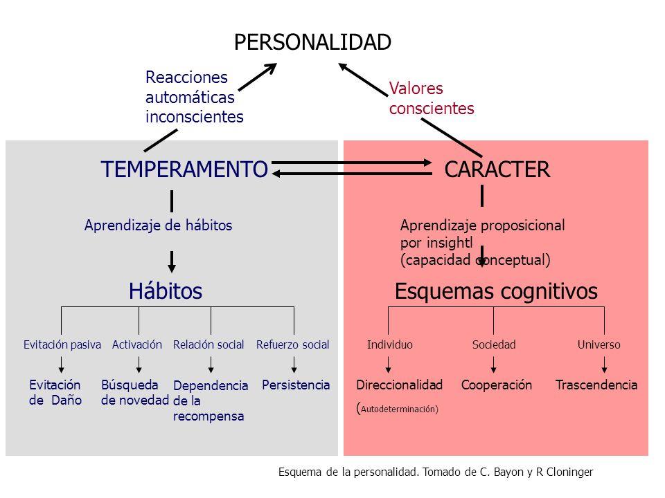 CARACTER Aprendizaje proposicional por insightl (capacidad conceptual) Esquemas cognitivos IndividuoSociedadUniverso Direccionalidad ( Autodeterminaci