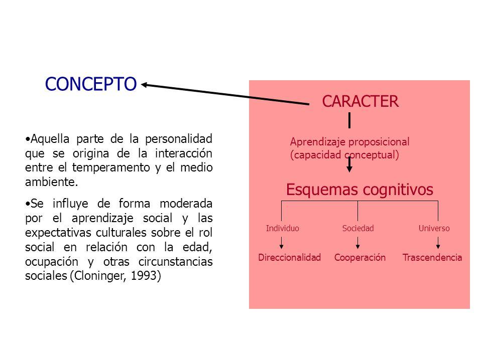 CARACTER Aprendizaje proposicional (capacidad conceptual) Esquemas cognitivos IndividuoSociedadUniverso DireccionalidadCooperaciónTrascendencia CONCEP