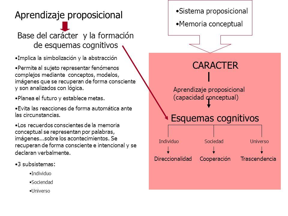 CARACTER Aprendizaje proposicional (capacidad conceptual) Esquemas cognitivos IndividuoSociedadUniverso DireccionalidadCooperaciónTrascendencia Sistem