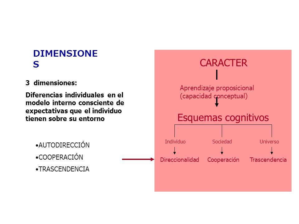 CARACTER Aprendizaje proposicional (capacidad conceptual) Esquemas cognitivos IndividuoSociedadUniverso DireccionalidadCooperaciónTrascendencia DIMENS