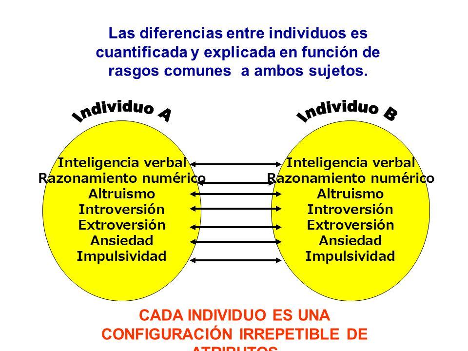 Inteligencia verbal Razonamiento numérico Altruismo Introversión Extroversión Ansiedad Impulsividad Inteligencia verbal Razonamiento numérico Altruism