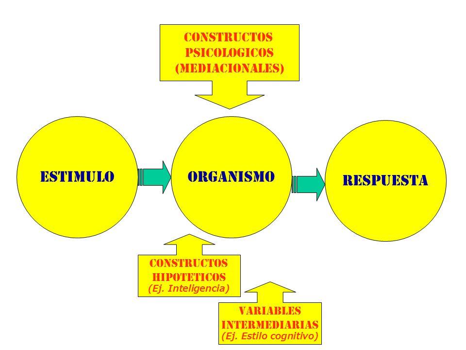 ESTIMULOORGANISMO RESPUESTA CONSTRUCTOS PSICOLOGICOS (MEDIACIONALES) CONSTRUCTOS HIPOTETICOS (Ej. Inteligencia) VARIABLES INTERMEDIARIAS (Ej. Estilo c
