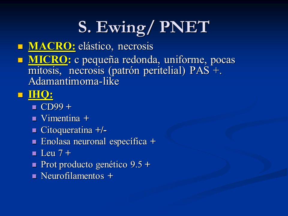S. Ewing/ PNET MACRO: elástico, necrosis MACRO: elástico, necrosis MICRO: c pequeña redonda, uniforme, pocas mitosis, necrosis (patrón peritelial) PAS