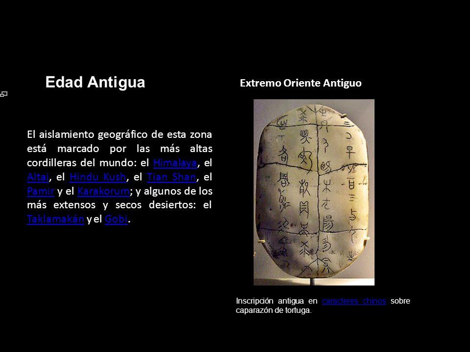 Edad Antigua Extremo Oriente Antiguo Inscripción antigua en caracteres chinos sobre caparazón de tortuga.caracteres chinos El aislamiento geográfico d