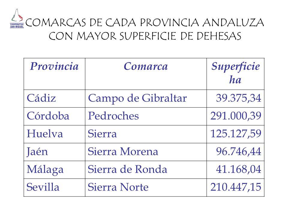 COMARCAS DE CADA PROVINCIA ANDALUZA CON MAYOR SUPERFICIE DE DEHESAS ProvinciaComarcaSuperficie ha CádizCampo de Gibraltar39.375,34 CórdobaPedroches291