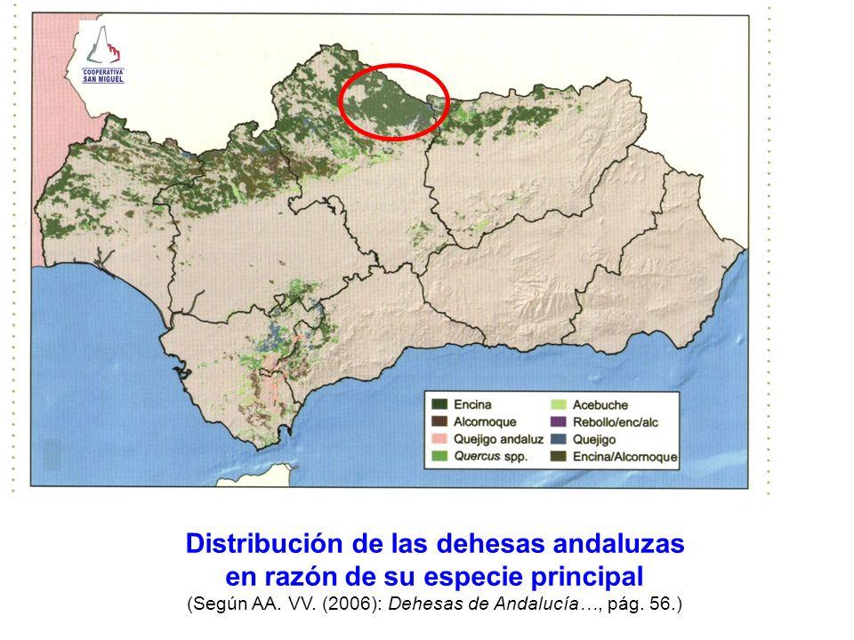 Distribución de las dehesas andaluzas en razón de su especie principal (Según AA. VV. (2006): Dehesas de Andalucía…, pág. 56.)