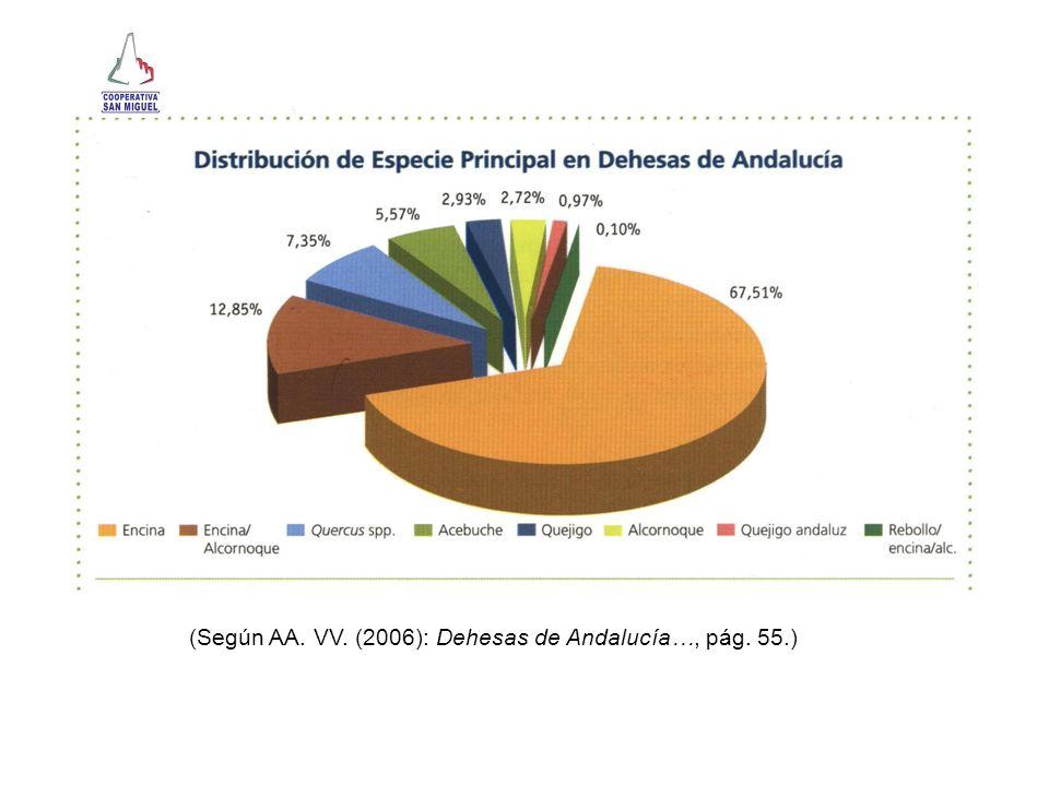 (Según AA. VV. (2006): Dehesas de Andalucía…, pág. 55.)