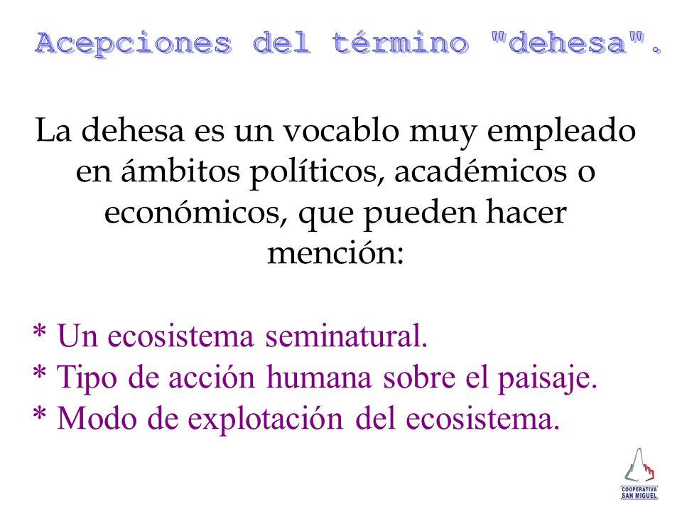 La dehesa es un vocablo muy empleado en ámbitos políticos, académicos o económicos, que pueden hacer mención: * Un ecosistema seminatural. * Tipo de a
