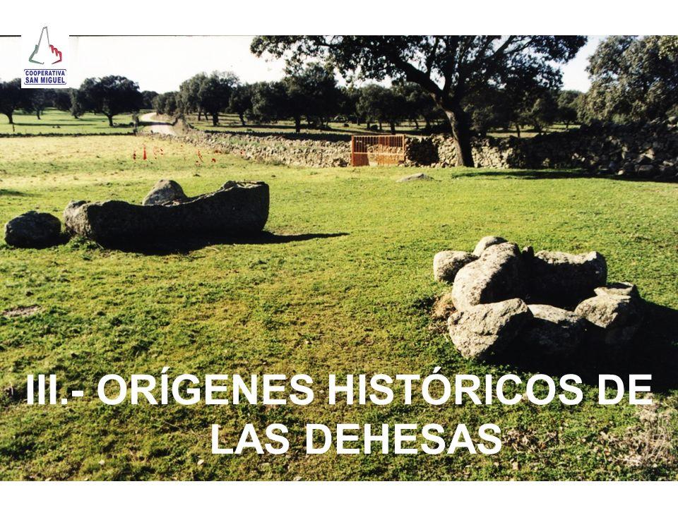 III.- ORÍGENES HISTÓRICOS DE LAS DEHESAS