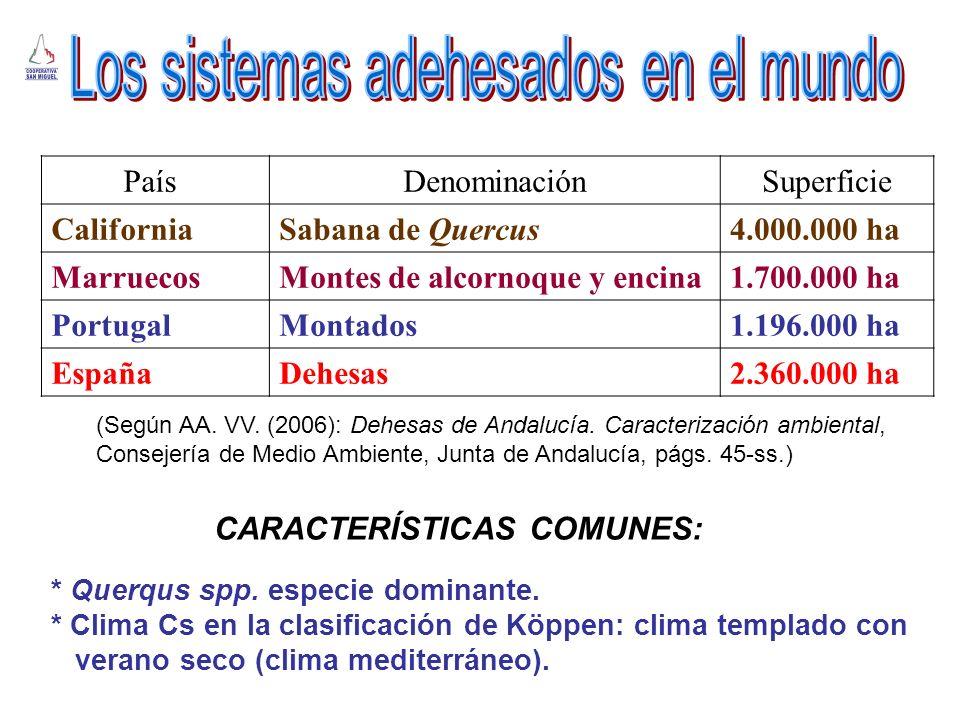 ComunidadSuperficie (Ha)% Nacional Andalucía928.12339,32 Extremadura943.09539,95 Castilla-La Mancha315.54913,37 Castilla León173.9347,36 (Según M.