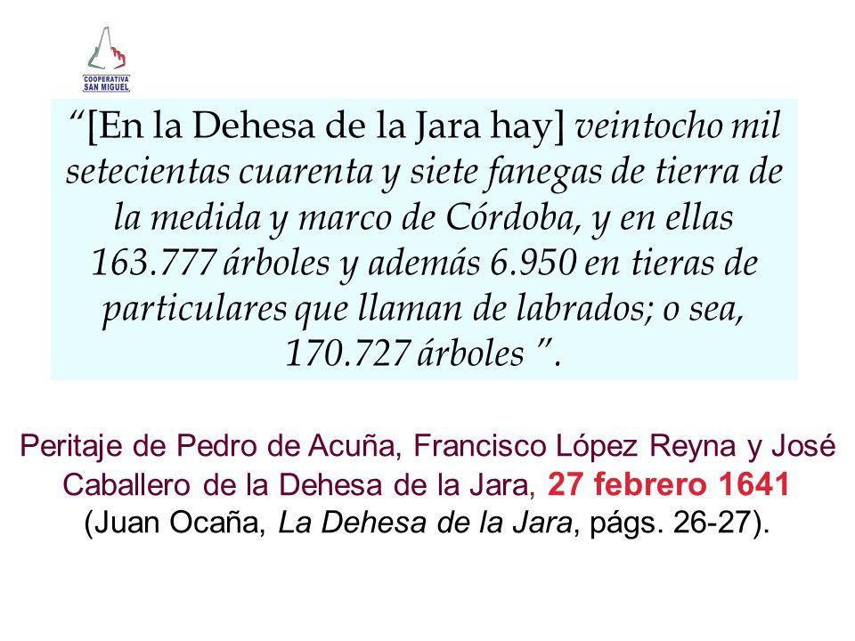 [En la Dehesa de la Jara hay] veintocho mil setecientas cuarenta y siete fanegas de tierra de la medida y marco de Córdoba, y en ellas 163.777 árboles