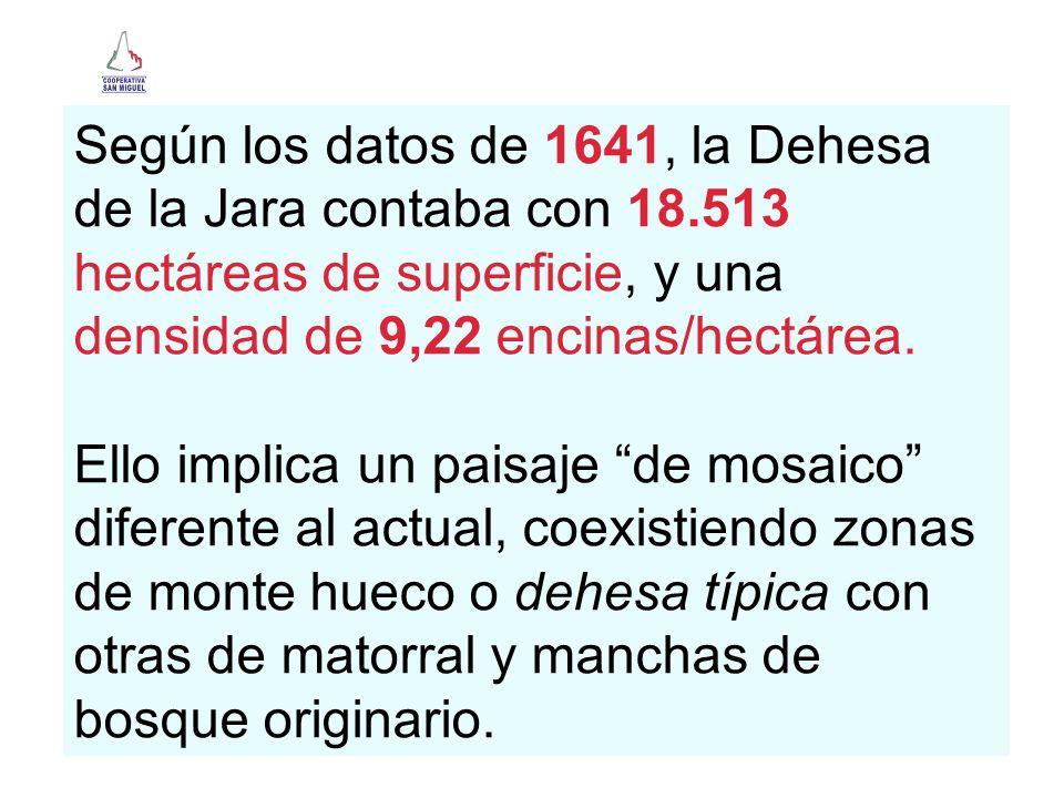 Según los datos de 1641, la Dehesa de la Jara contaba con 18.513 hectáreas de superficie, y una densidad de 9,22 encinas/hectárea. Ello implica un pai