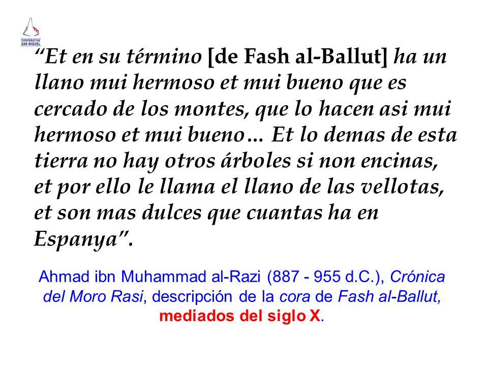 Et en su término [de Fash al-Ballut] ha un llano mui hermoso et mui bueno que es cercado de los montes, que lo hacen asi mui hermoso et mui bueno… Et