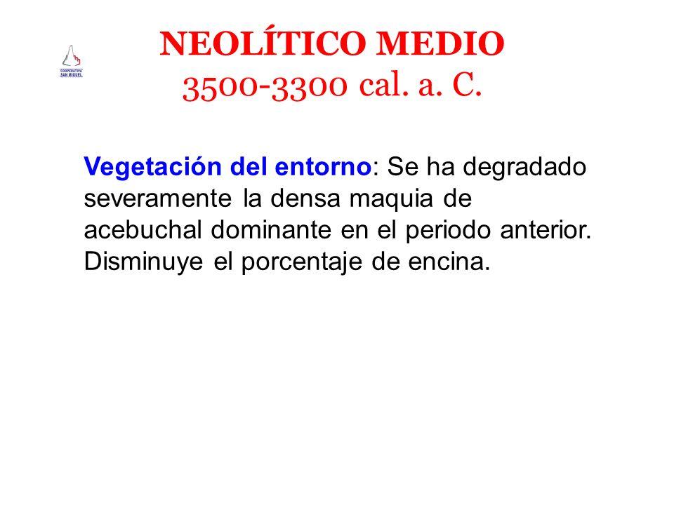 NEOLÍTICO MEDIO 3500-3300 cal. a. C. Vegetación del entorno: Se ha degradado severamente la densa maquia de acebuchal dominante en el periodo anterior